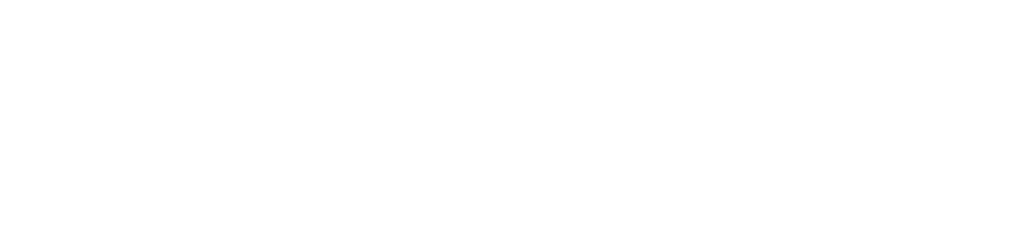 Malmö the True Story
